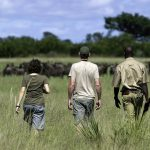 13 Days Authentic Uganda Safari