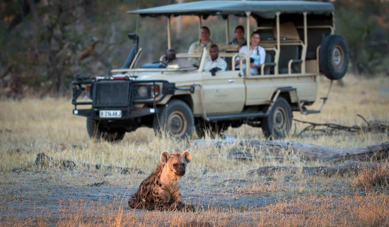 Africa safaris & trips