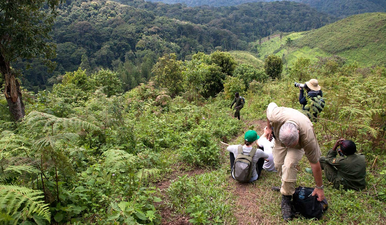 4 days mountain gorilla habituation trip